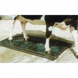 Pediluvio de tapiz para bovinos 180 x 90 cm