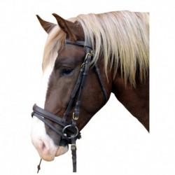 Cabezada de cuero caballo trabajo