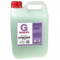 Champú Genesis potenciador del color 5000 ml