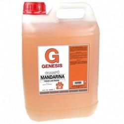 Champú Genesis Pro-eco 5000 ml
