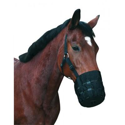 Bozal para caballos