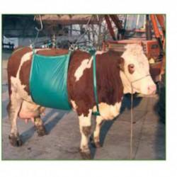 Arnés elevador vacas 1000 kg