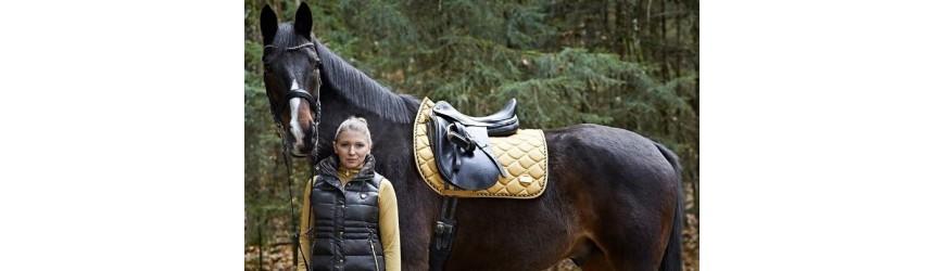 Equipamiento para el caballo