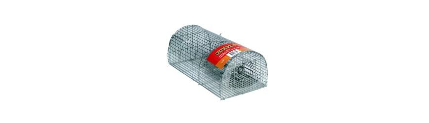 Rata/ratón