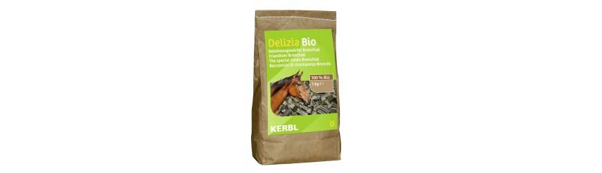 - Complementos para la salud del caballo